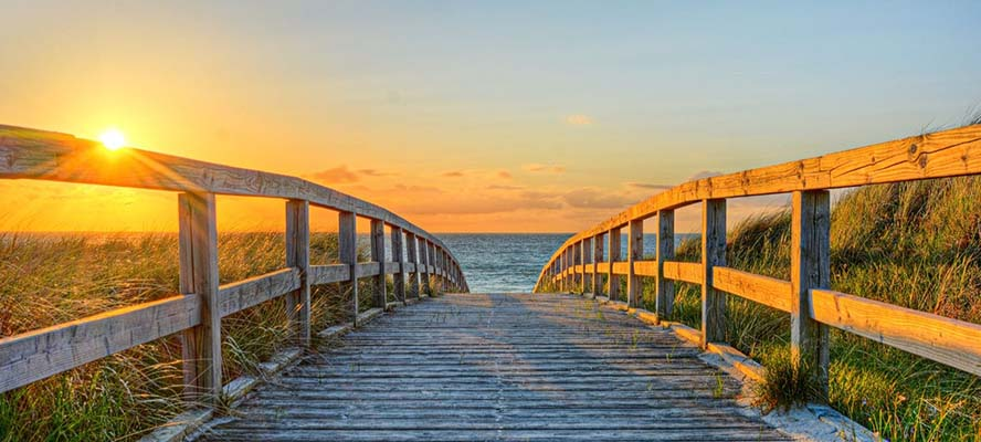 Dein Lebensweg: 5 Schritte, wie du ihn findest und persönlich erfolgreich wirst